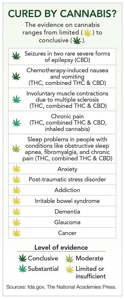 cannabis_UNAHMARCH19.indd