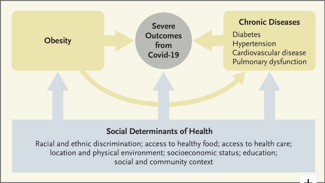 Screenshot_2020-07-19 Covid-19 and Disparities in Nutrition and Obesity NEJM
